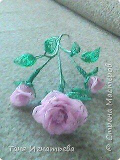 Розы с двойным кантом фото 3