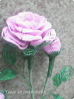 Розы с двойным кантом фото 4