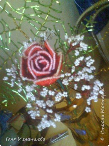 Розы с двойным кантом фото 5