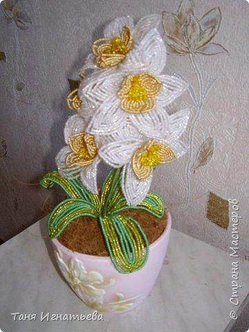 Орхидея Фаленопсис. Сделала её года 4 назад, по книге. фото 5