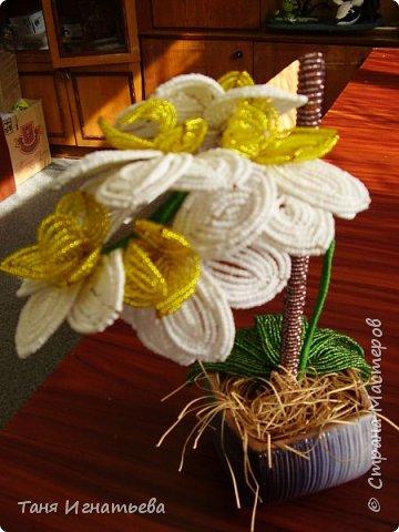 Орхидея Фаленопсис. Сделала её года 4 назад, по книге. фото 3