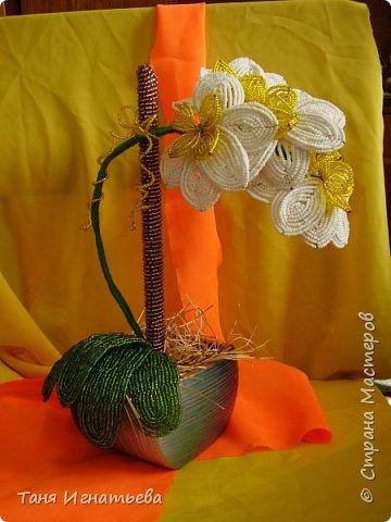 Орхидея Фаленопсис. Сделала её года 4 назад, по книге. фото 4
