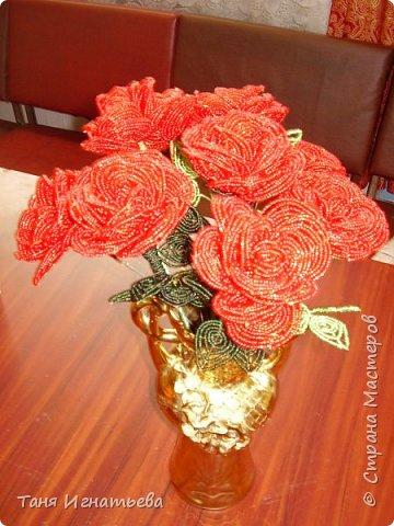 Розы с двойным кантом фото 9