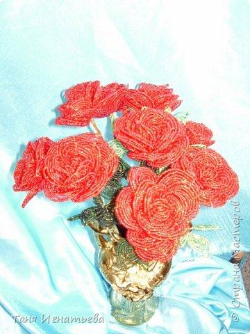 Розы с двойным кантом фото 8