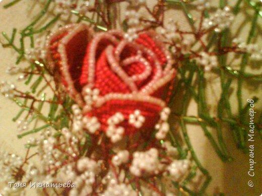Розы с двойным кантом фото 6