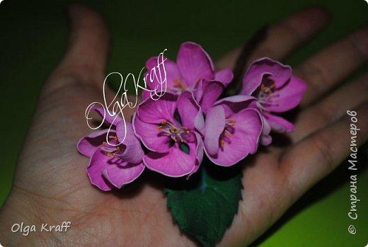 опять цветочки  фото 12