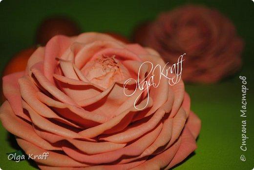 опять цветочки  фото 11