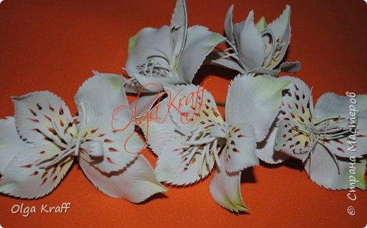 опять цветочки  фото 7
