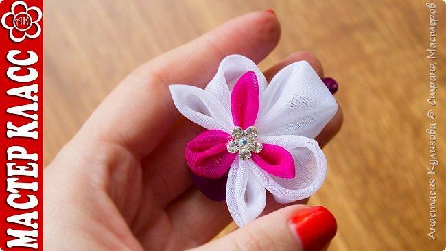В этом видео уроке я покажу как из лепестков канзаши можно собрать цветок напоминающий орхидею. Для работы нам потребуется органза белого и малинового цвета, орхидеи такого цветового сочетания мне нравятся больше всего.  Основные лепестки композиции: - острый лепесток канзаши; - круглый лепесток канзаши; - вывернутый круглый лепесток канзаши.   Приятного просмотра и Творческого вдохновения. Если вам понравился урок, поделитесь им с друзьями. Если во время просмотра ролика у вас возникли какие либо вопросы, пишите их в комментариях, я постараюсь ответить на них. фото 1