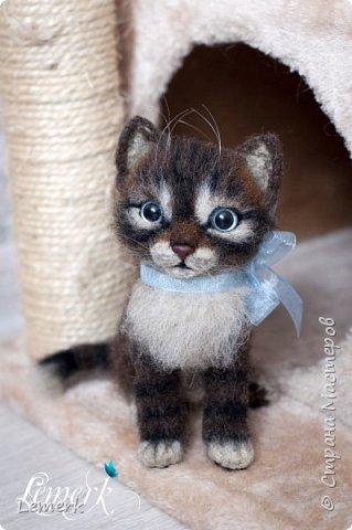 Воробушек. Валяный полосатый котенок. 17 см фото 3