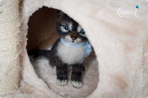 Воробушек. Валяный полосатый котенок. 17 см фото 4