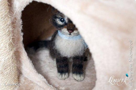 Воробушек. Валяный полосатый котенок. 17 см фото 5