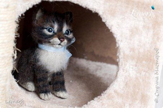 Воробушек. Валяный полосатый котенок. 17 см фото 6