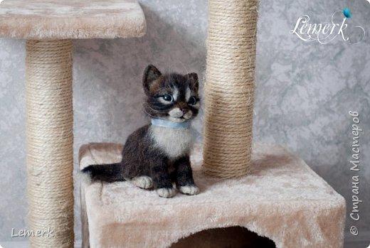 Воробушек. Валяный полосатый котенок. 17 см фото 7