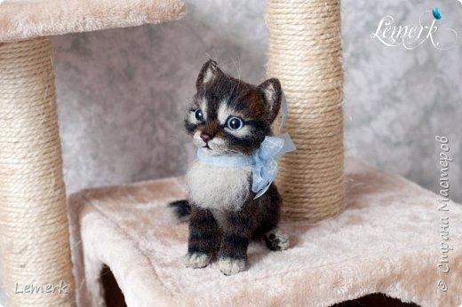 Воробушек. Валяный полосатый котенок. 17 см фото 8