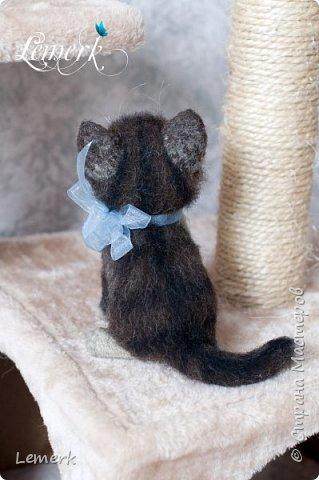 Воробушек. Валяный полосатый котенок. 17 см фото 9