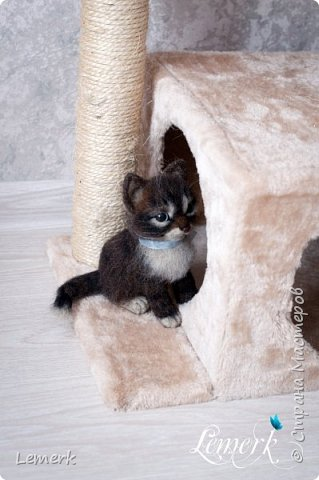 Воробушек. Валяный полосатый котенок. 17 см фото 10