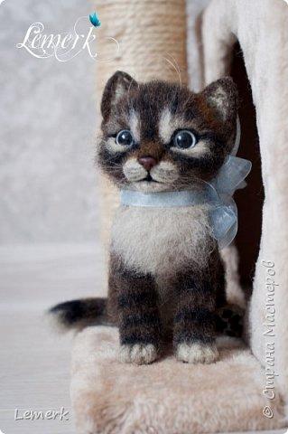 Воробушек. Валяный полосатый котенок. 17 см фото 11