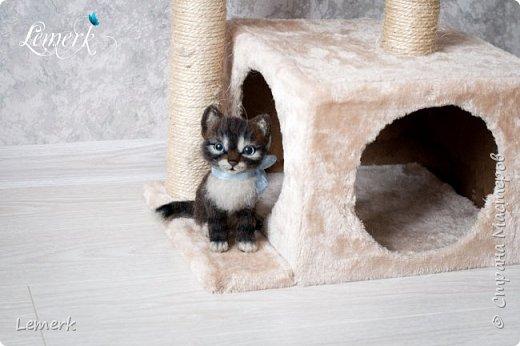 Воробушек. Валяный полосатый котенок. 17 см фото 12