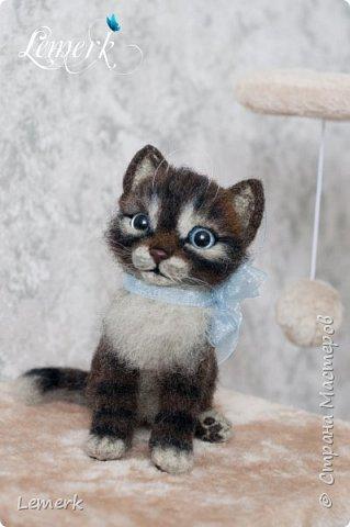 Воробушек. Валяный полосатый котенок. 17 см фото 14