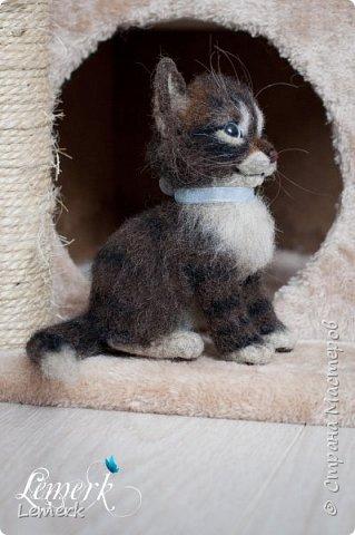 Воробушек. Валяный полосатый котенок. 17 см фото 15