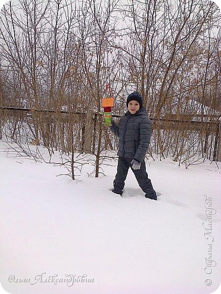 """Совсем недавно у нас прошел в классе проект """"Накормим птиц зимой"""" Дети вместе с родителями сделали самые разнообразные кормушки. Мы их повесили около школы. Теперь постоянно подкармливаем птичек. фото 15"""