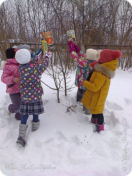 """Совсем недавно у нас прошел в классе проект """"Накормим птиц зимой"""" Дети вместе с родителями сделали самые разнообразные кормушки. Мы их повесили около школы. Теперь постоянно подкармливаем птичек. фото 16"""