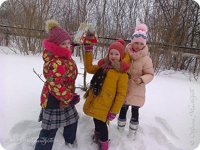 """Совсем недавно у нас прошел в классе проект """"Накормим птиц зимой"""" Дети вместе с родителями сделали самые разнообразные кормушки. Мы их повесили около школы. Теперь постоянно подкармливаем птичек. фото 18"""