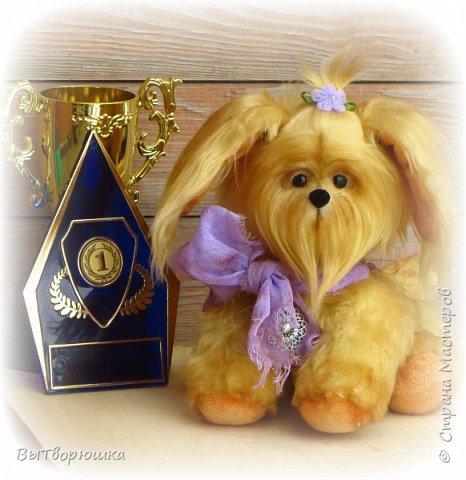Пёсик Руди. фото 1
