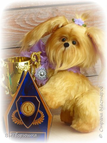 Пёсик Руди. фото 3