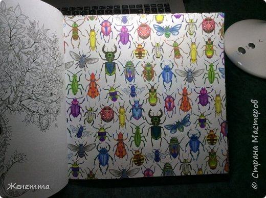 Это первая и последняя страничка раскрашенная шариковыми цветными ручками... чтобы цвета выглядели ярче, мне приходилось довольно сильно давить на стержень ручки... в итоге обратная сторона странички довольно бугристая получилась, и теперь может возникнуть трудность при ее раскрашивании... фото 2