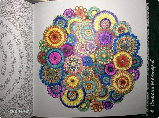 Это первая и последняя страничка раскрашенная шариковыми цветными ручками... чтобы цвета выглядели ярче, мне приходилось довольно сильно давить на стержень ручки... в итоге обратная сторона странички довольно бугристая получилась, и теперь может возникнуть трудность при ее раскрашивании... фото 1