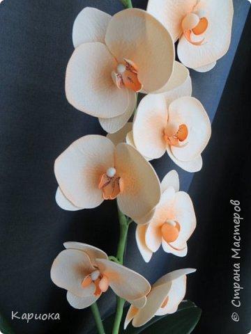 На подарки своялись еще вот такие веточки орхидеи. фото 5