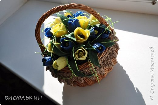 мини-тюльпаны фото 7