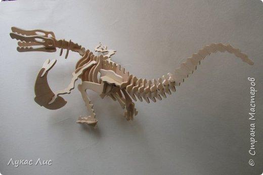 Здравствуйте дорогие друзья представляю вам вот такого динозавра . фото 1