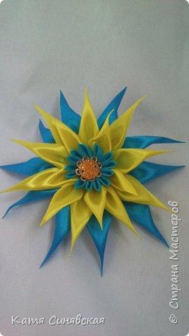 Мои новенькие цветочки. Резиночка. фото 2