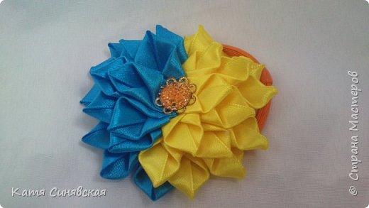 Мои новенькие цветочки. Резиночка. фото 1