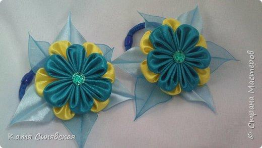 Мои новенькие цветочки. Резиночка. фото 6
