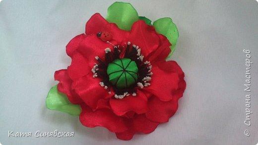 Мои новенькие цветочки. Резиночка. фото 7