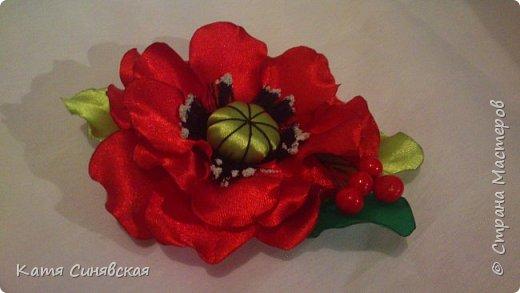 Мои новенькие цветочки. Резиночка. фото 11