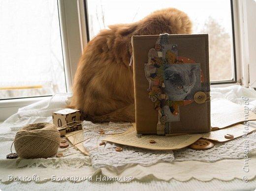 Всем привет! Снова блокнот, и это 3-й с Фаризкой - кошкой сестры:) фото 11