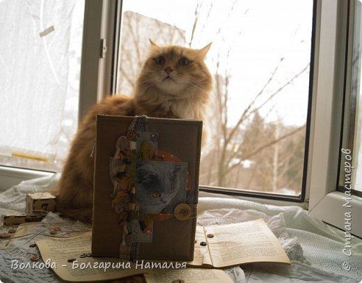Всем привет! Снова блокнот, и это 3-й с Фаризкой - кошкой сестры:) фото 12