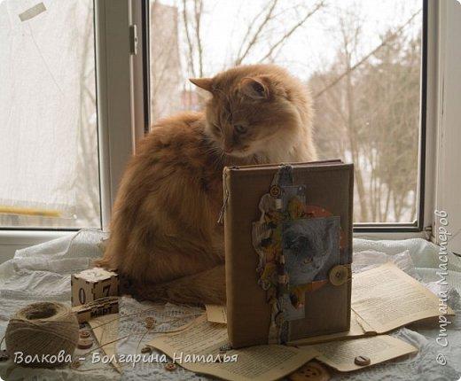 Всем привет! Снова блокнот, и это 3-й с Фаризкой - кошкой сестры:) фото 13