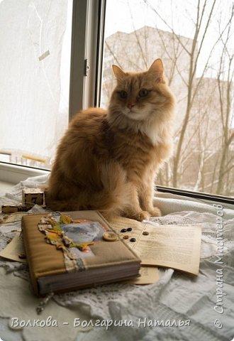 Всем привет! Снова блокнот, и это 3-й с Фаризкой - кошкой сестры:) фото 9