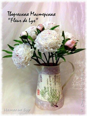 Здравствуйте дорогие жители СМ!!! я сегодня к Вам с моим любимым видом пионов, беленькие с розовыми крапинками)))) фото 1