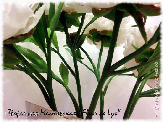 Здравствуйте дорогие жители СМ!!! я сегодня к Вам с моим любимым видом пионов, беленькие с розовыми крапинками)))) фото 2