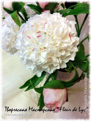 Здравствуйте дорогие жители СМ!!! я сегодня к Вам с моим любимым видом пионов, беленькие с розовыми крапинками)))) фото 3