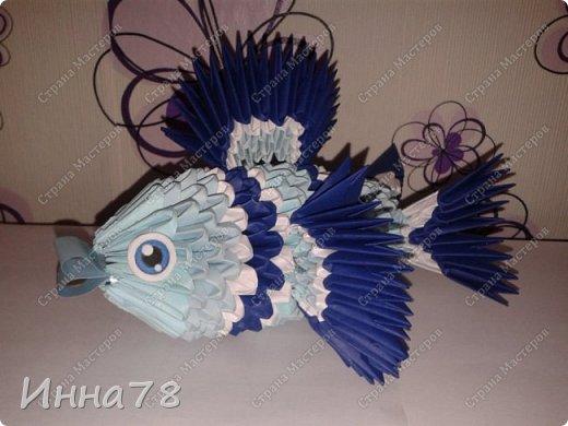 Еще рыбка