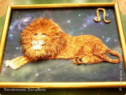 Здравствуйте дорогие мастера и мастерицы!!!Сегодня у меня лев.Сестра моего зятя попросила сделать панно со львом.Она по знаку зодиака -лев.Фон -распечатка зведного неба.На этом фото сделала более светлым,следуещее темный,а какой лучше не могу выбрать. фото 2