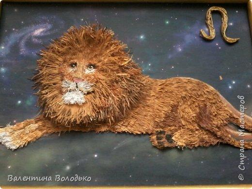 Здравствуйте дорогие мастера и мастерицы!!!Сегодня у меня лев.Сестра моего зятя попросила сделать панно со львом.Она по знаку зодиака -лев.Фон -распечатка зведного неба.На этом фото сделала более светлым,следуещее темный,а какой лучше не могу выбрать. фото 8